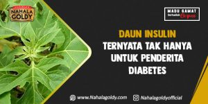 Read more about the article Daun Insulin Ternyata Tak Hanya untuk Penderita Diabetes