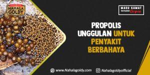Read more about the article Propolis Unggulan untuk Penyakit Berbahaya