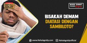 Read more about the article Bisakah Deman Diatasi dengan Sambiloto?