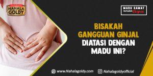 Read more about the article Bisakah Gangguan Ginjal Diatasi dengan Madu ini?