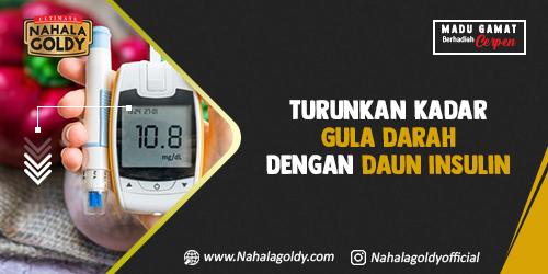 Turunkan Kadar Gula Darah dengan Daun Insulin