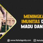Meningkatkan Imunitas dengan Madu dan Gamat
