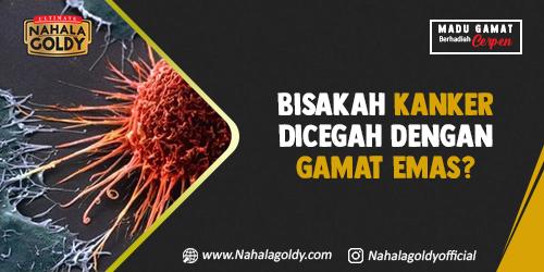 You are currently viewing Bisakah Kanker Dicegah dengan Gamat Emas?
